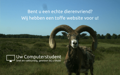 Bent u een echte dierenvriend? Wij hebben een toffe website voor u!